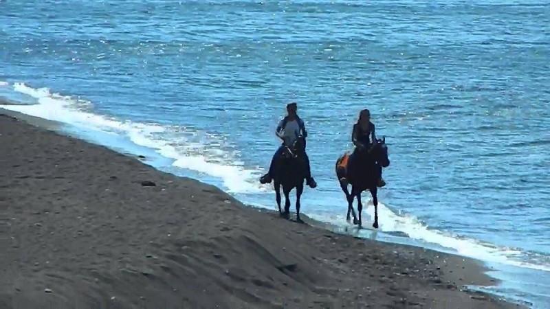 Horseback Riding, Aegean Wonder Santorini Tours, AW ...